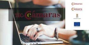 Ayudas para creación de web, tiendas online y campañas de posicionamiento de la camara de comercio